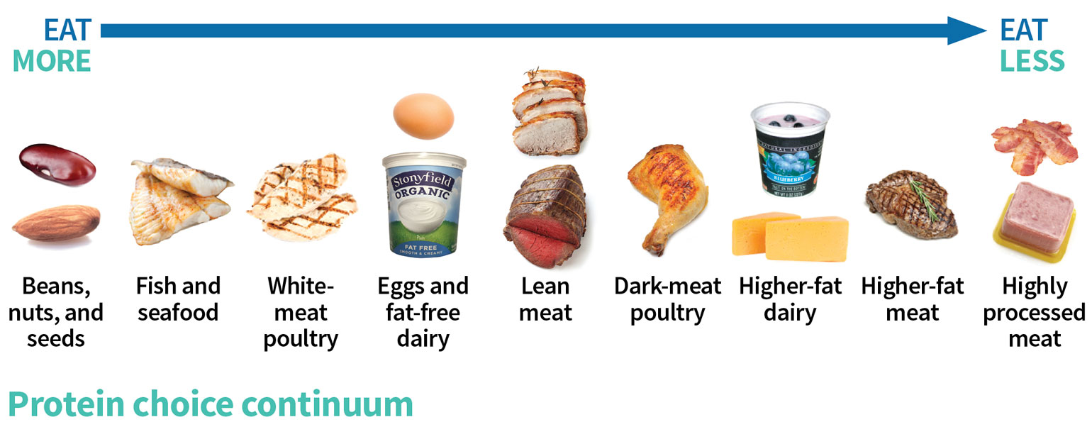 Change your Protein Continuum