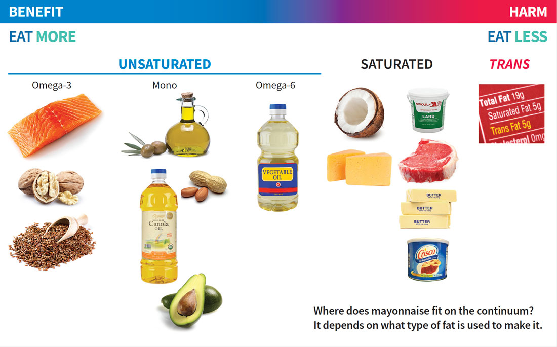 Swap Your Fats Continuum